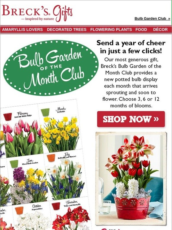 Breck S Gifts Keep The Giving Going With A Bulb Club Milled
