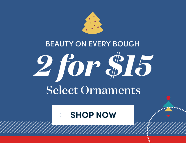 2 For $15 Select Ornaments ›