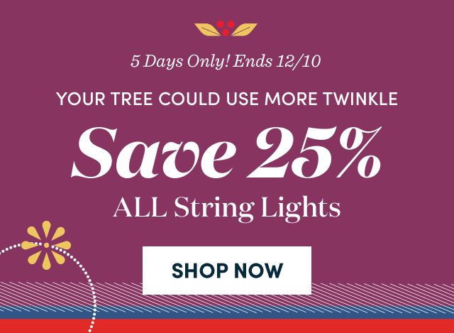 Save 25% ALL String Lights ›