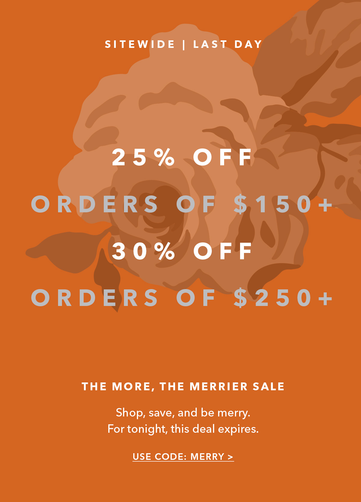 Sitewide | Ends Tonight // 30% Off $250+ / 25% Off $150+ // USE CODE MERRY →