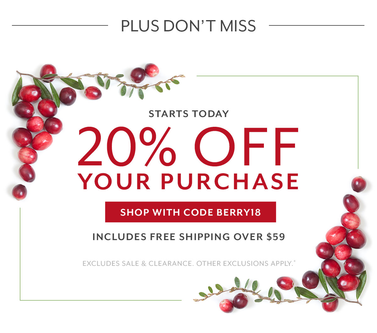 20% Off Purchase Coupon
