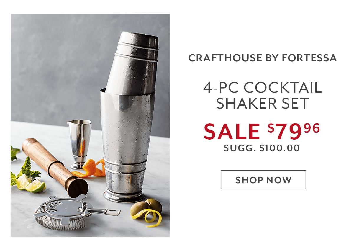 Fortessa 4-Piece Cocktail Shaker Set