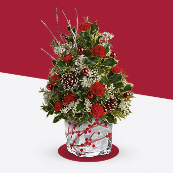 Teleflora's Festive Berries And Holly Tree
