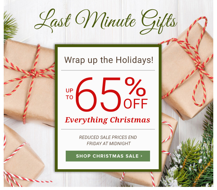 Last Minute Gifts Up to 65% Off!