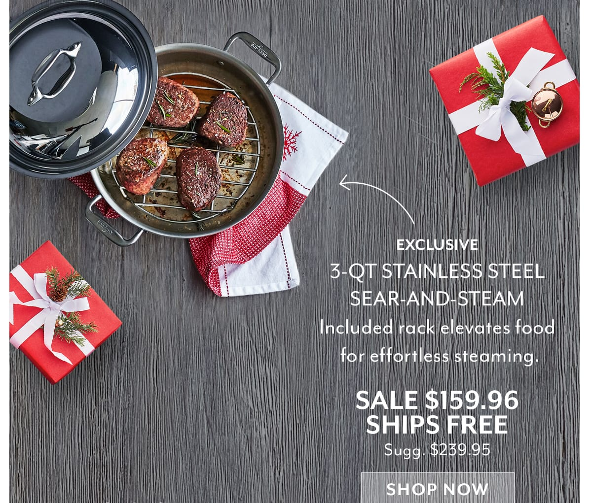 Stainless Steel Sear-and-Steam