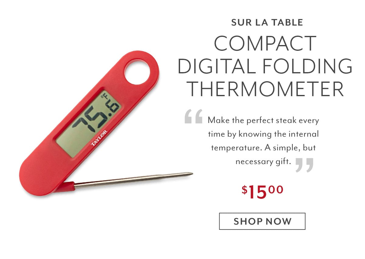 Compact Digital Folding Thermometer