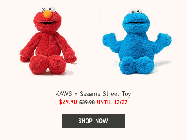 KAWS X SESAME STREET TOY $29.90 - SHOP NOW