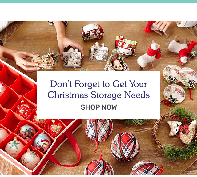 Don't forget to get your Christmas storage needs. Shop now!