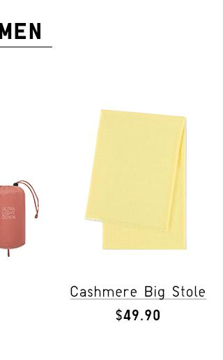 CASHMERE BIG STOLE $39.90