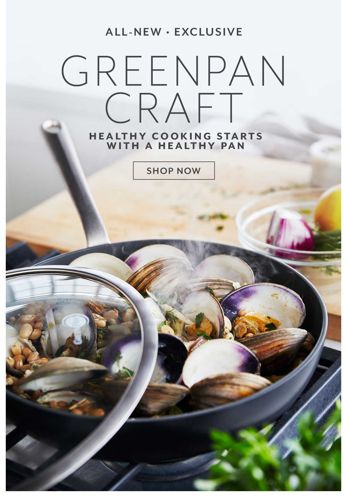 GreenPan Craft