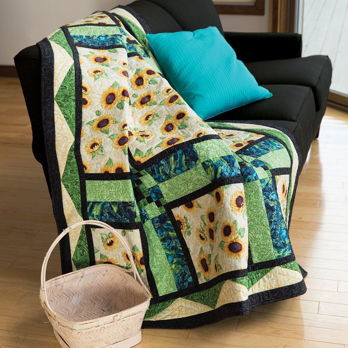 Imagine This Quilt Kit By Ann Lauer