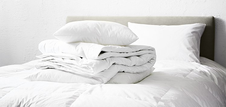 Basic Bedding & More