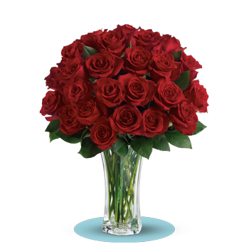 Love and Devotion – Long Stemmed Red Roses