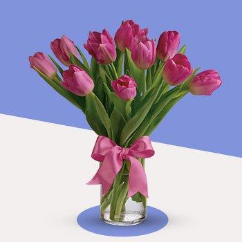 Precious Pink Tulips