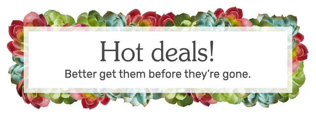 Hot deals! Better get them before they're gone.