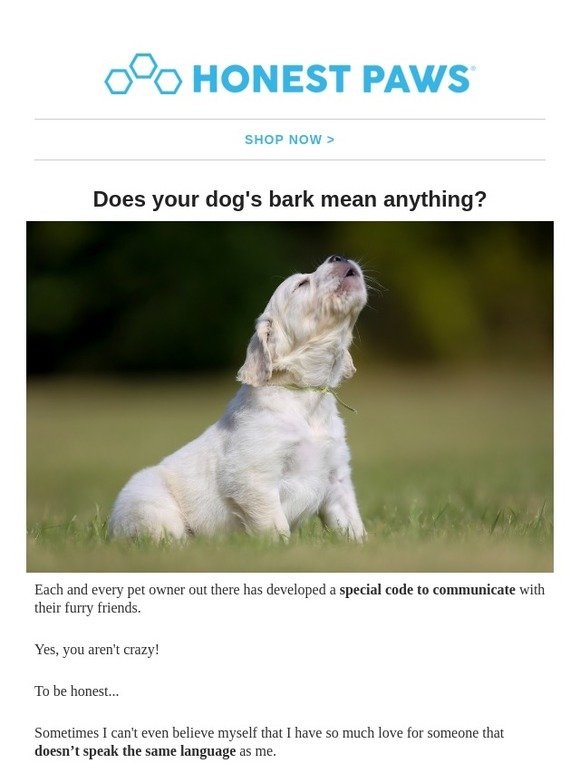 Honest Paws: Why Dogs Bark? 🐕 | Milled