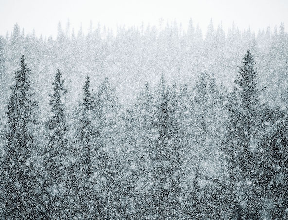 A New Approach to Treating Seasonal Affective Disorder