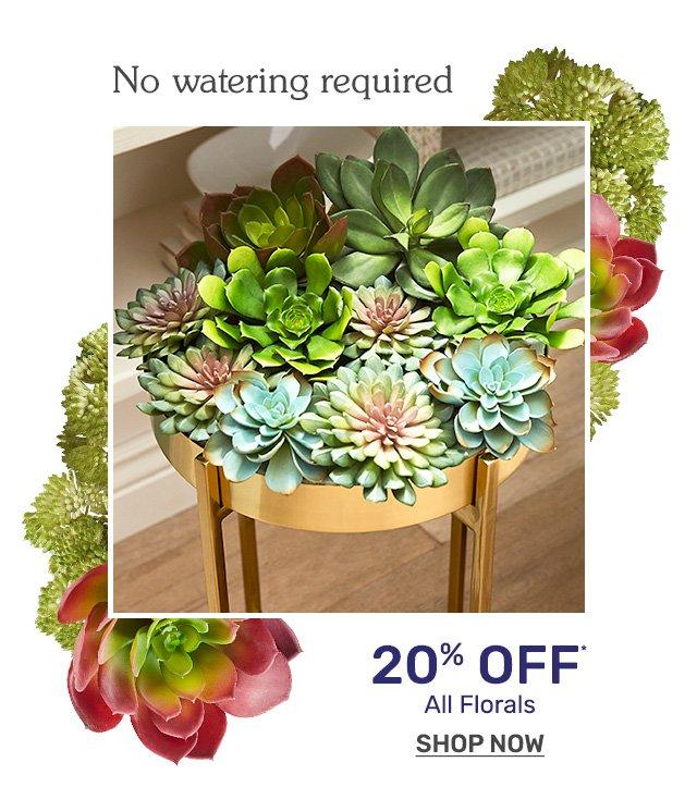 Shop succulents now twenty percent off.