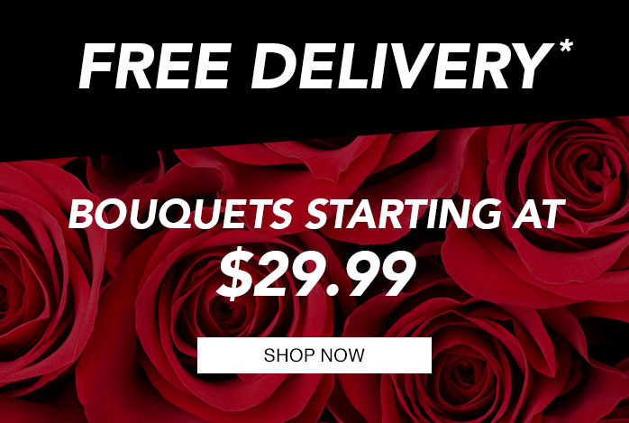 Today Only - Free Delivery on all Bouquets