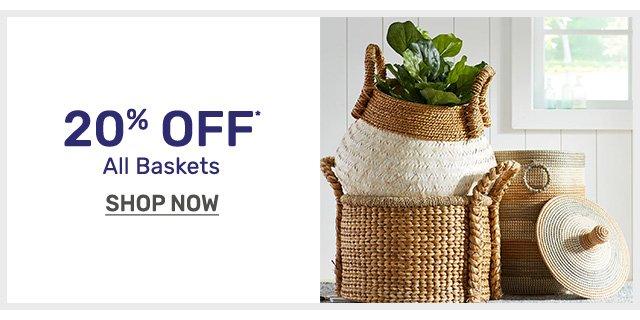 Baskets20Off-bnr-1901