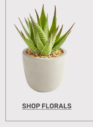 Shop florals.
