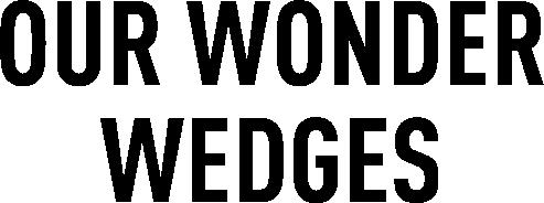 OUR WONDER WEDGES