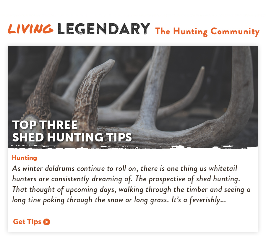 Living Legendary - Top 3 Shed Hunting Tips