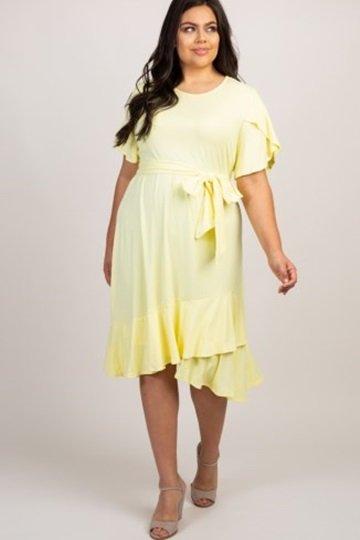 Women's Plus Dress 2