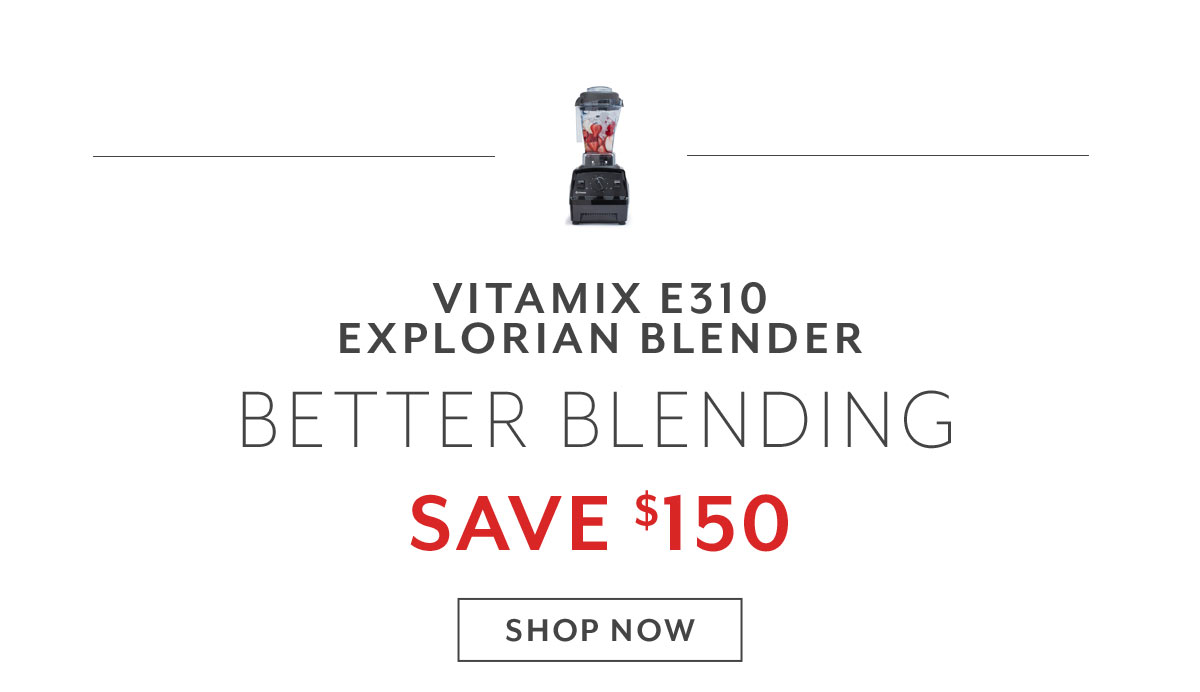 Vitamix Explorian