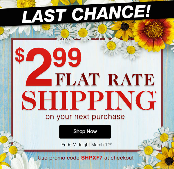 $2.99 Flat Rate Shipping on your next order!