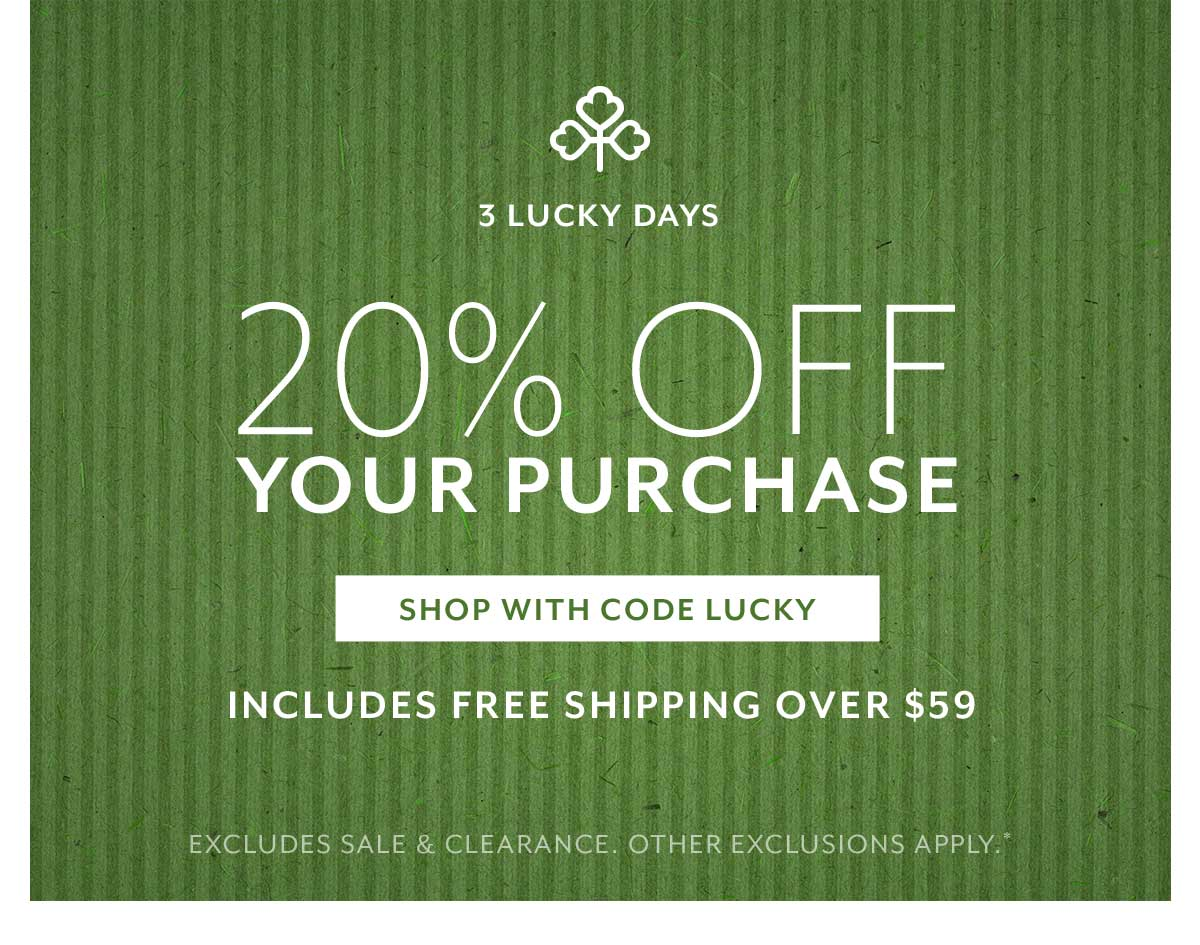 20% Off Your Purchase