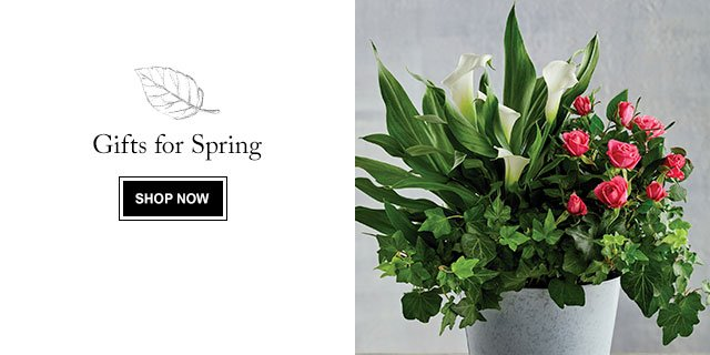 Gifts for Spring