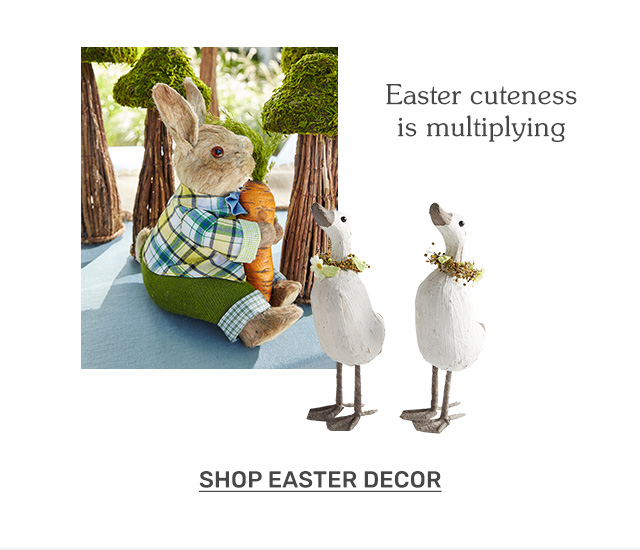 Easter cuteness is multiplying. Shop Easter decor.