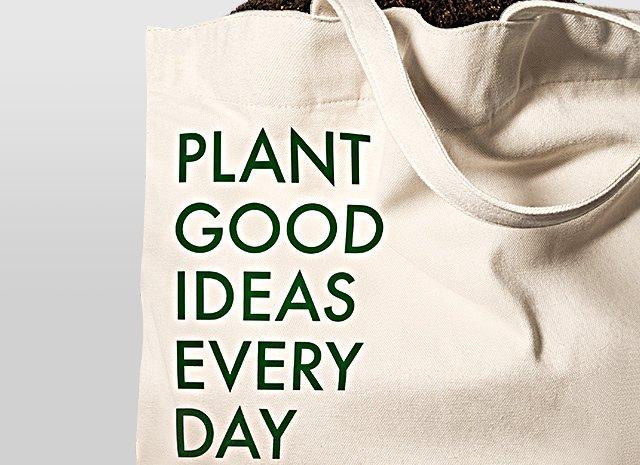 Origins  PLANT GOOD IDEAS EVERY DAY