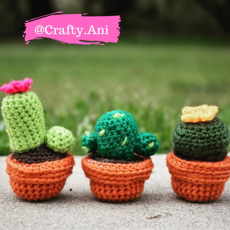 15 DIY Cactus Crochet Patterns & Tutorials | 800x800