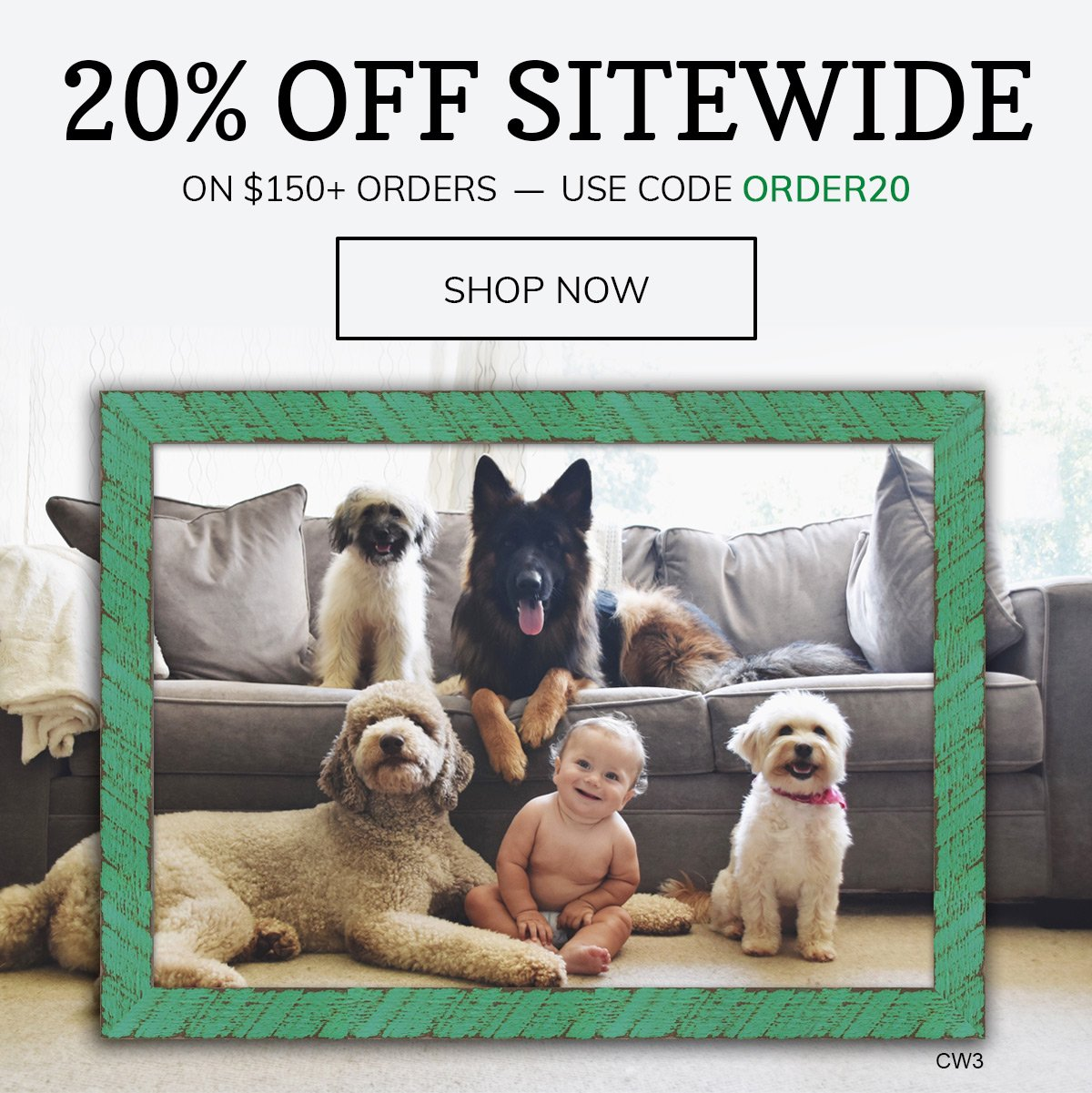Save 20% on $150+ Orders! Use Code ORDER20.