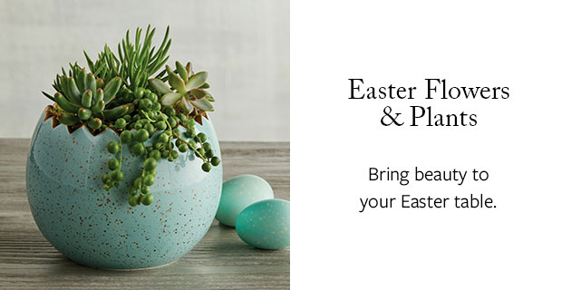 Easter Flowers & Plants - Bring beauty to your Easter table.