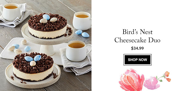 Bird's Nest Cheesecake Duo