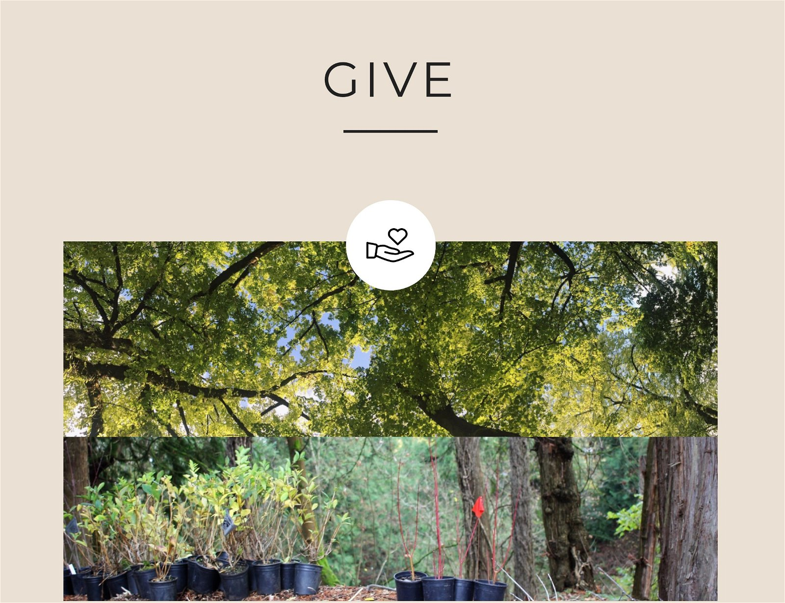 GIVE   Friends of Trees
