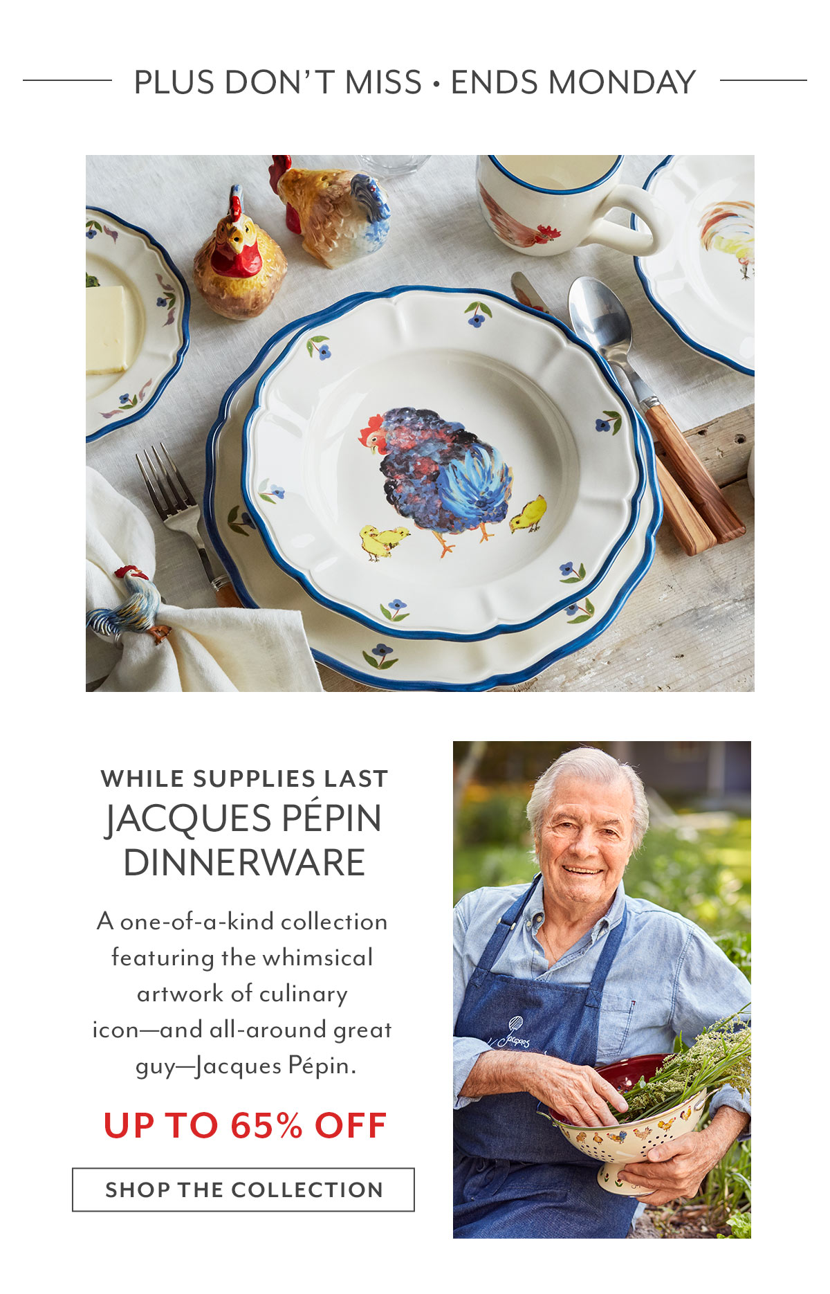 Jacques Pepin Dinnerware