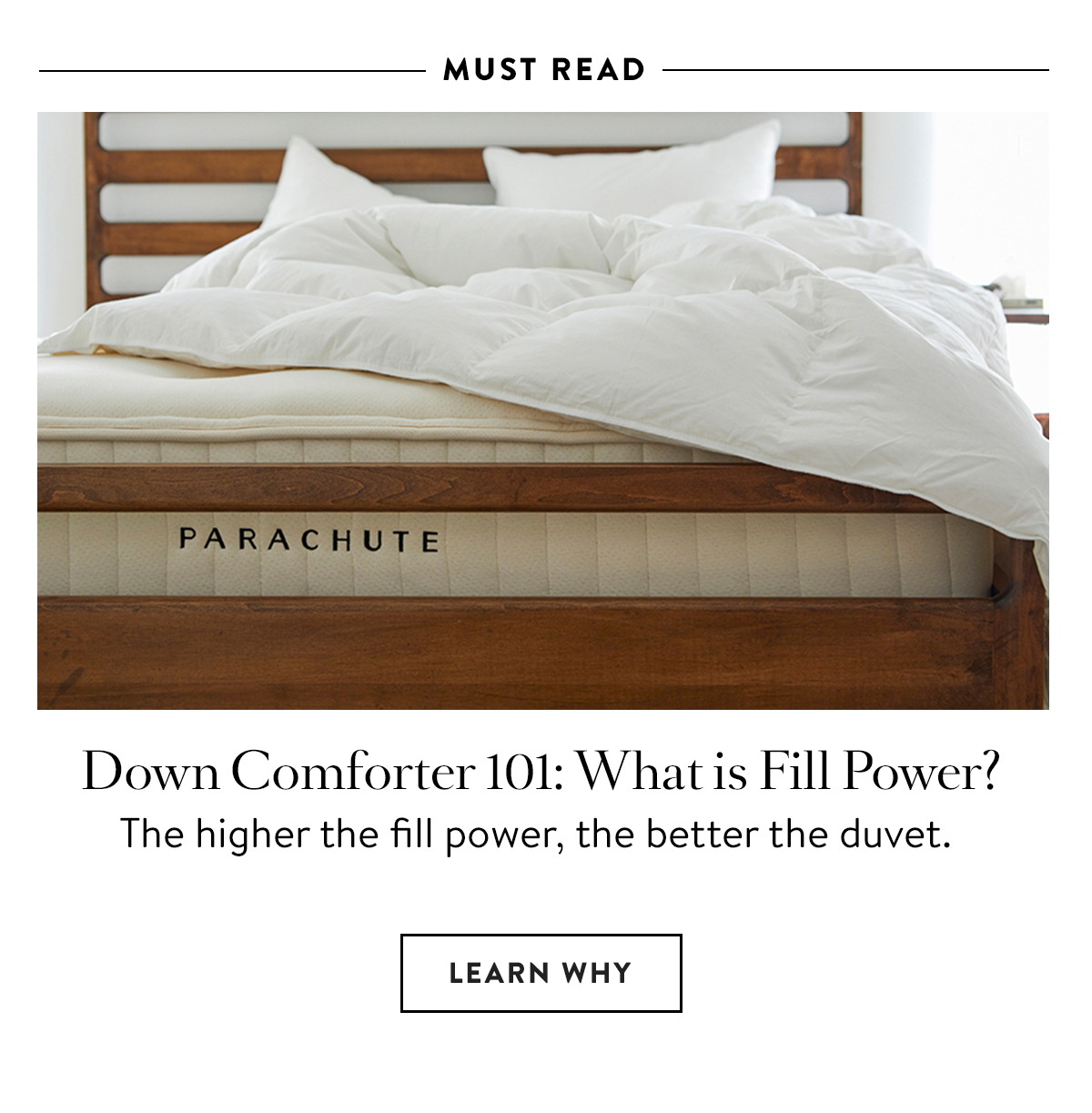 Fill Power Blog Story