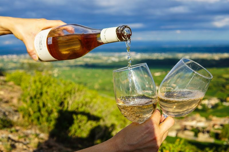 Book Wine Tasting Tours