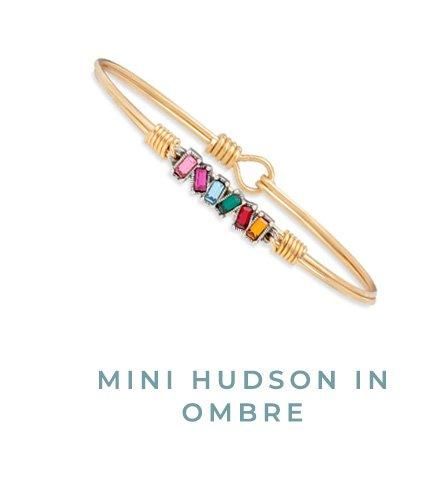 MINI HUDSON IN OMBRE