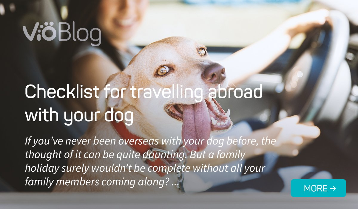 Checklist for travelling abroad with your dog