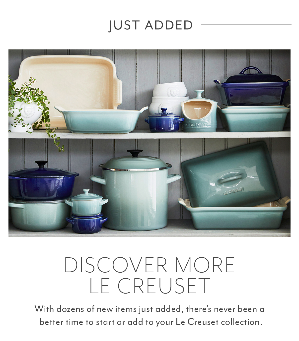 Discover More Le Creuset