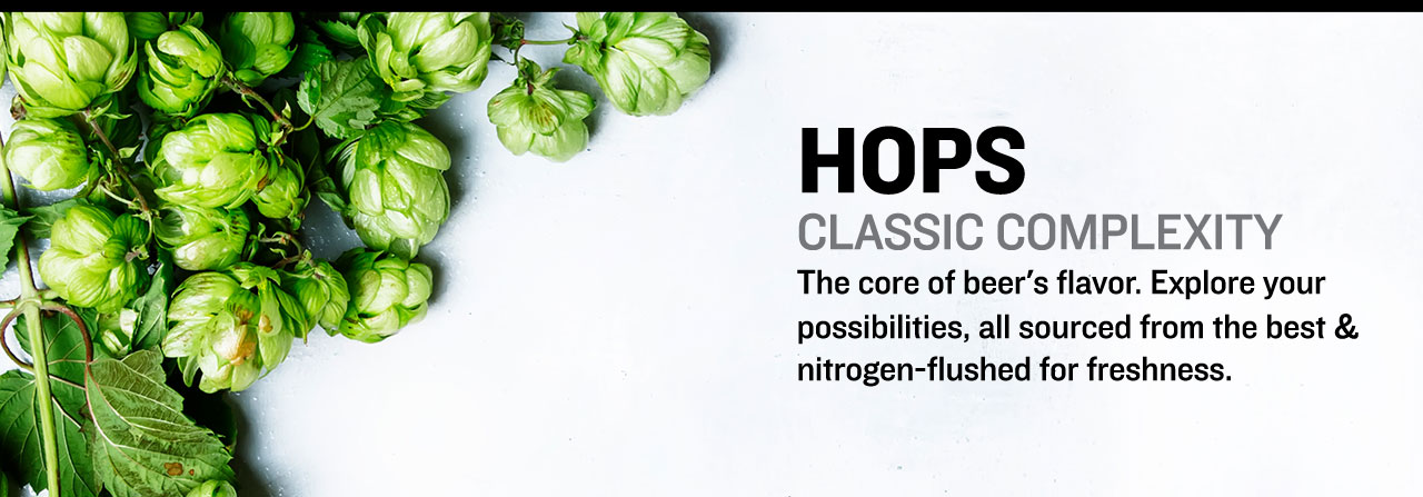 Hops are the core of beer's flavor