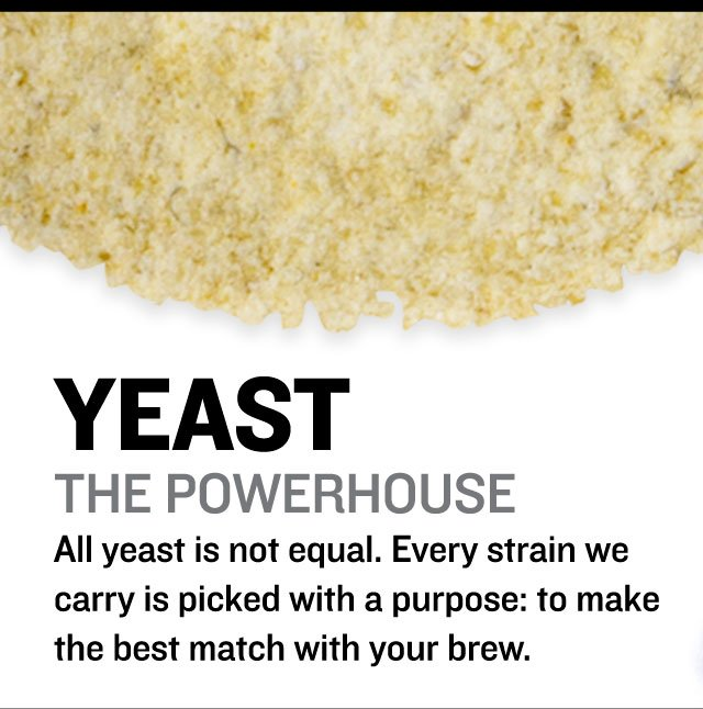 All yeast is not equal
