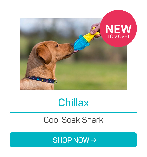Chillax Cool Soak Shark