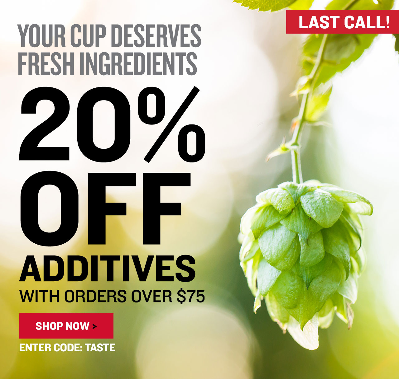 20% Off All Flavor Additions. Promo code: TASTE