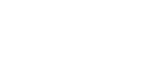 VOL. 16 ARTIFACTS CHRONICLE FREE WITH PURCHASES OVER $100